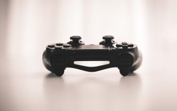 PlayStation 4 Custom Controller Review